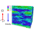 Single-particle Lagrangian statistics from direct numerical simulations of rotating-stratified turbulence